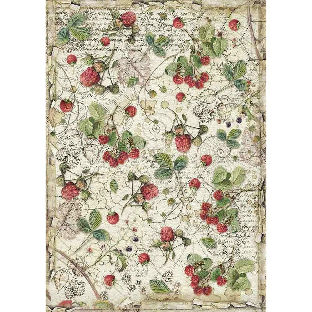 Stamperia Rice Paper Sheet A3 Raspberry