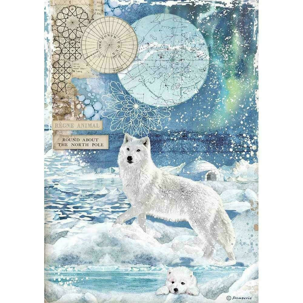 Stamperia Rice Paper Sheet A4 Wolf Arctic Antarctic