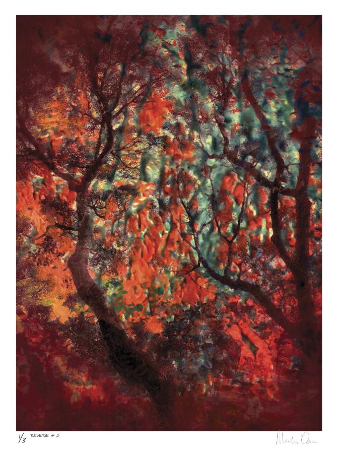 Reverie No. 3 | Edition 3 | Martin Osner