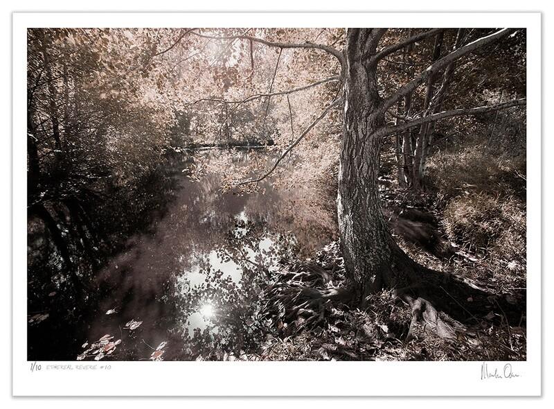 Ethereal Reverie No.8 | Ed 20 | Martin Osner