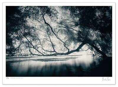 Ethereal Reverie No.7 | Ed 20 | Martin Osner
