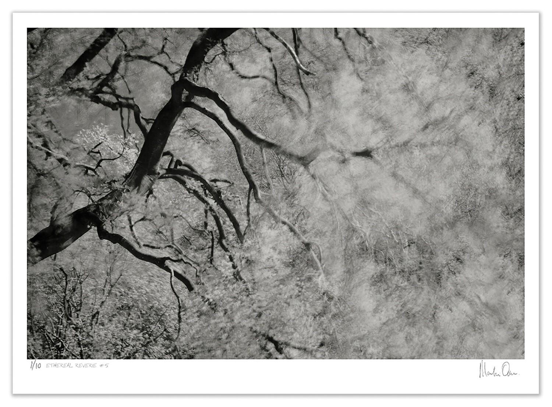 Ethereal Reverie No.6 | Ed 20 | Martin Osner