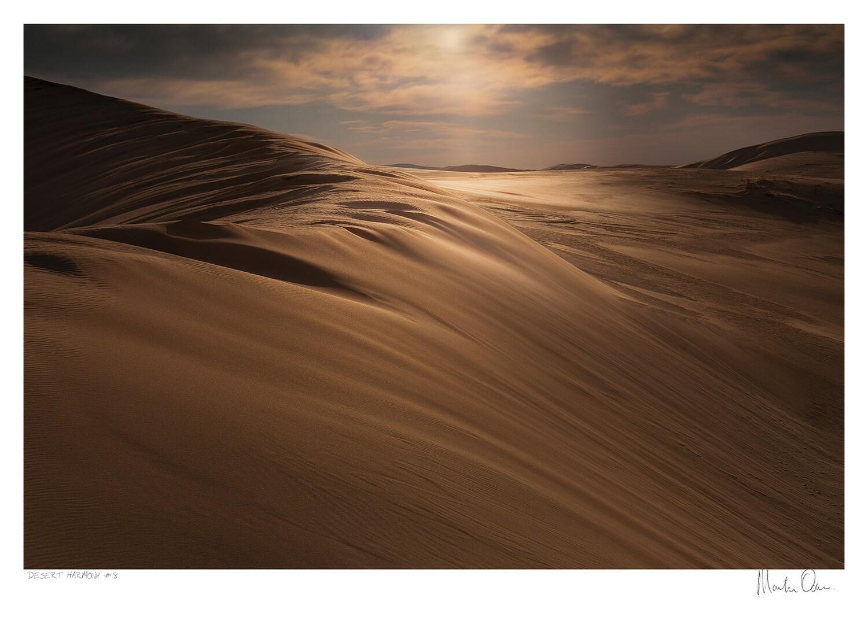 Desert Harmony No.8   Martin Osner
