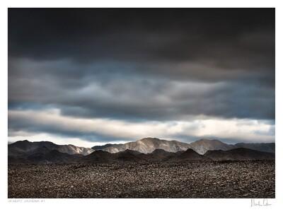 Desolate Splendour No.1 | Martin Osner