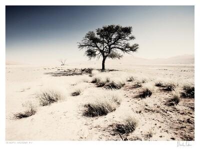 Desolate Splendour No.2   Martin Osner