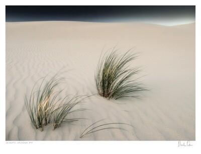 Desolate Splendour No.3   Martin Osner