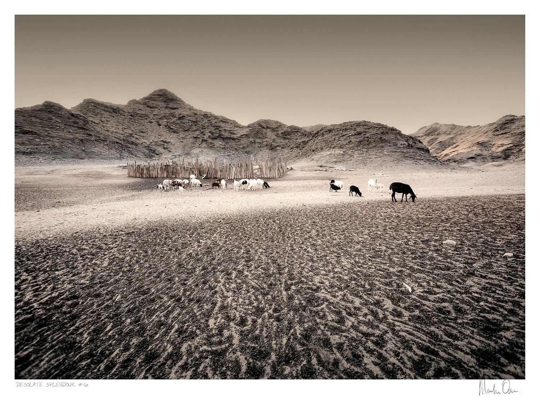 Desolate Splendour No.6 | Martin Osner