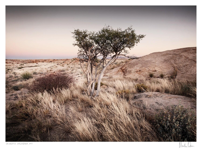 Desolate Splendour No.4 | Martin Osner