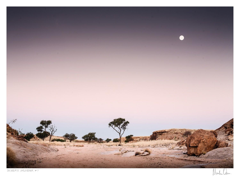Desolate Splendour No.7 | Martin Osner