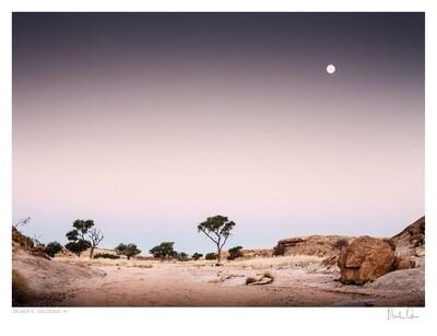 Desolate Splendour No.7   Martin Osner
