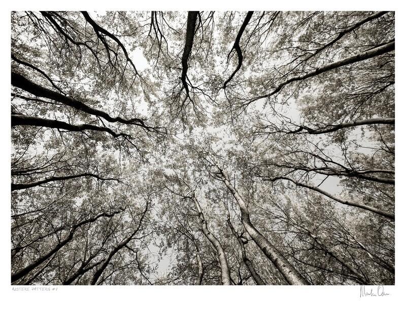 Austere Pattern No.1 | Martin Osner