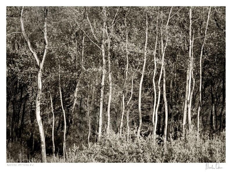 Austere Pattern No.2 | Martin Osner