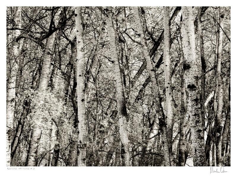Austere Pattern No.3 | Martin Osner