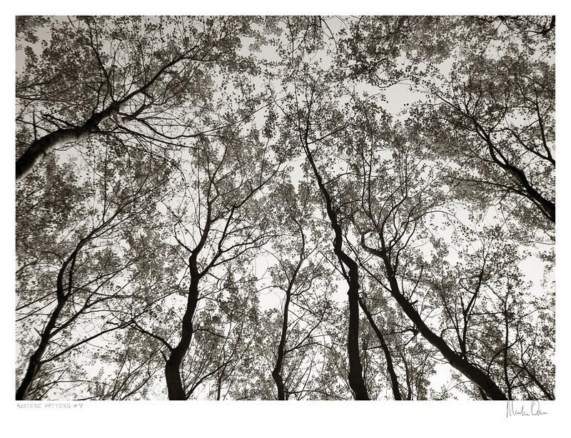 Austere Pattern No.4 | Martin Osner