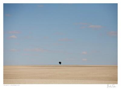 Desolate Splendour No.5   Martin Osner