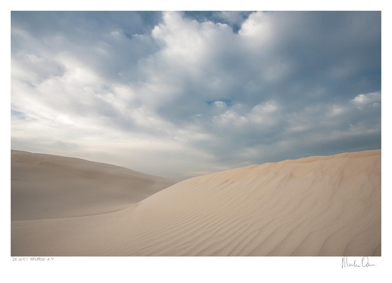Desert Harmony No.4   Martin Osner