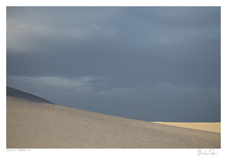 Desert Harmony No.7   Martin Osner