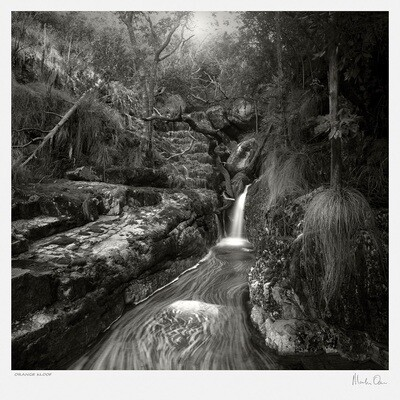 Classic Black and White | Orange Kloof | Martin Osner