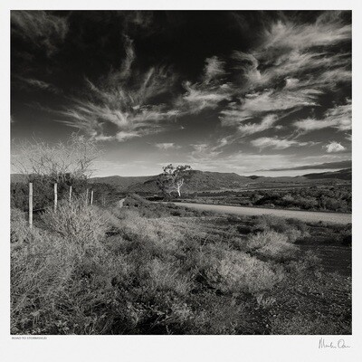 Classic Black and White | Breede River View | Martin Osner
