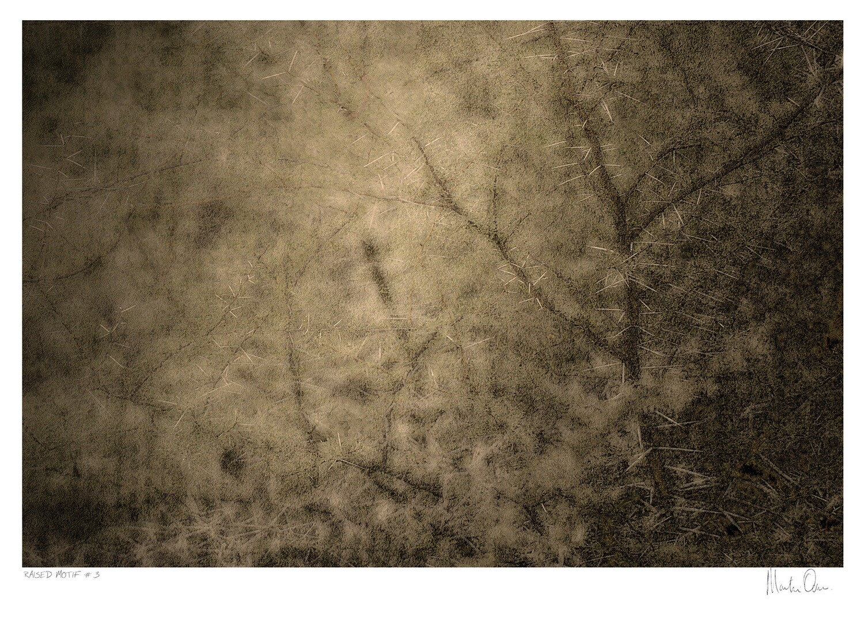 Raised Motif No.3 | Martin Osner