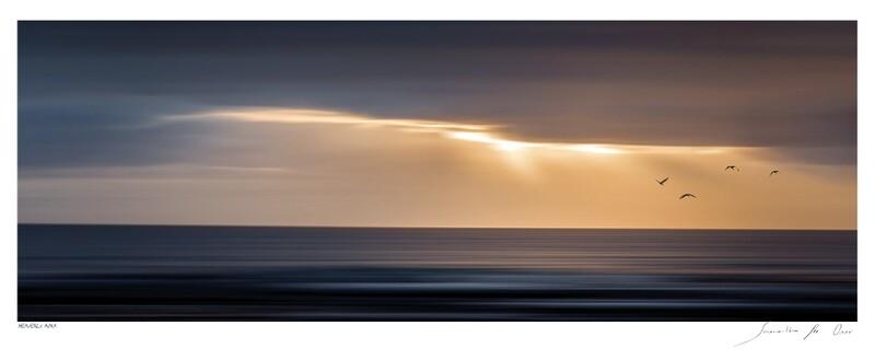 Shoreline Impression No.12   Samantha Lee Osner