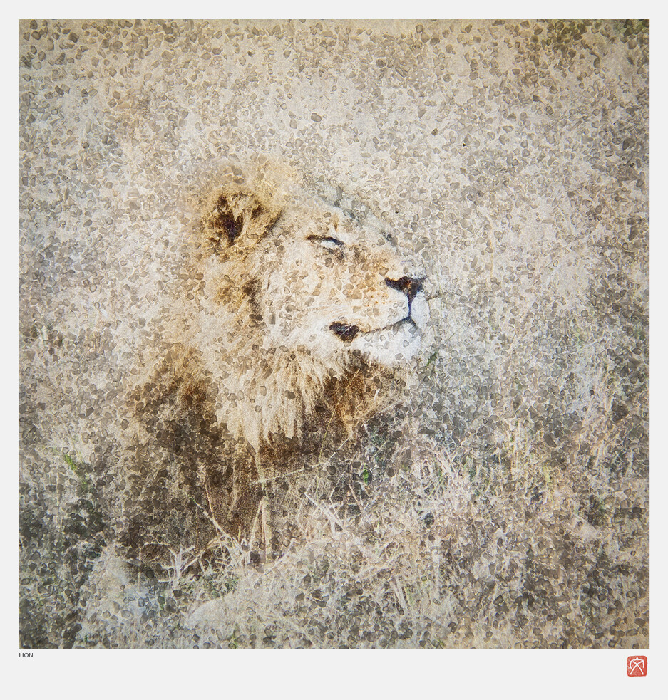 African Crystal | Lion | Fumi Hirai