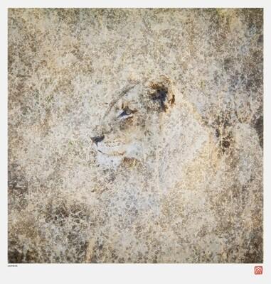 African Crystal | Lioness | Fumi Hirai
