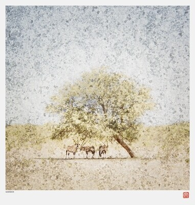 African Crystal | Gemsbok | Fumi Hirai