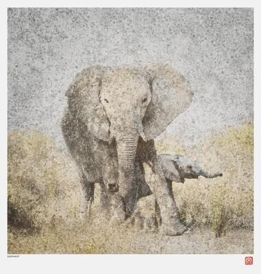 African Crystal | Elephant | Fumi Hirai