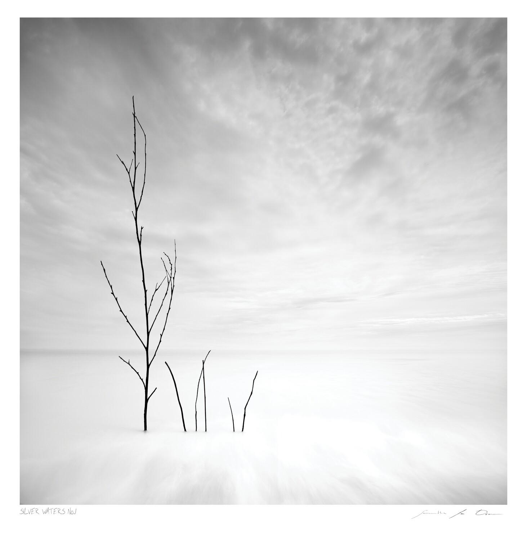 Silver Waters No.1 | Ltd Ed | Samantha Lee Osner