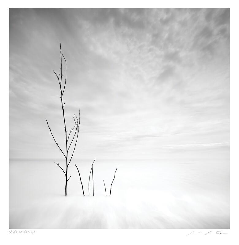 Silver Waters No.1   Ltd Ed   Samantha Lee Osner
