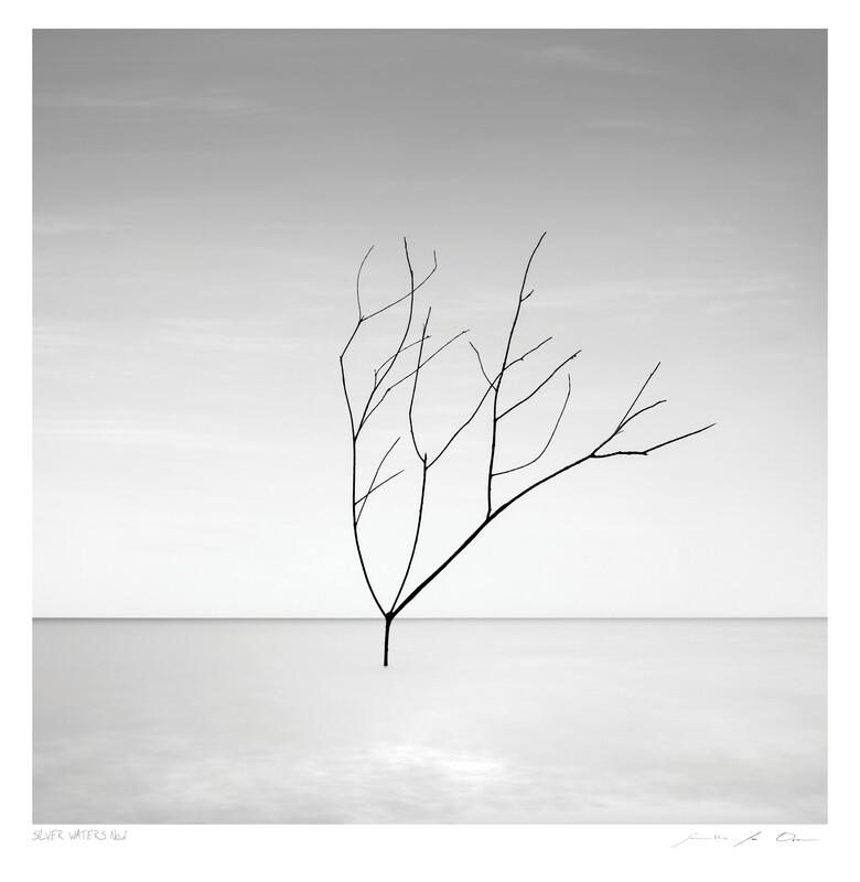Silver Waters No.2   Ltd Ed   Samantha Lee Osner
