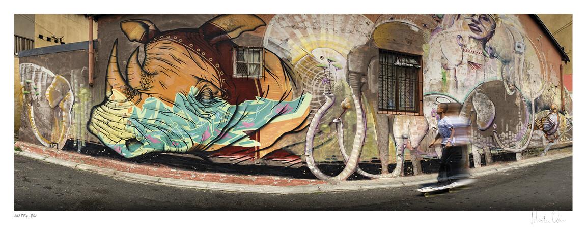 Skater Boy   Street Art Impression   Martin Osner
