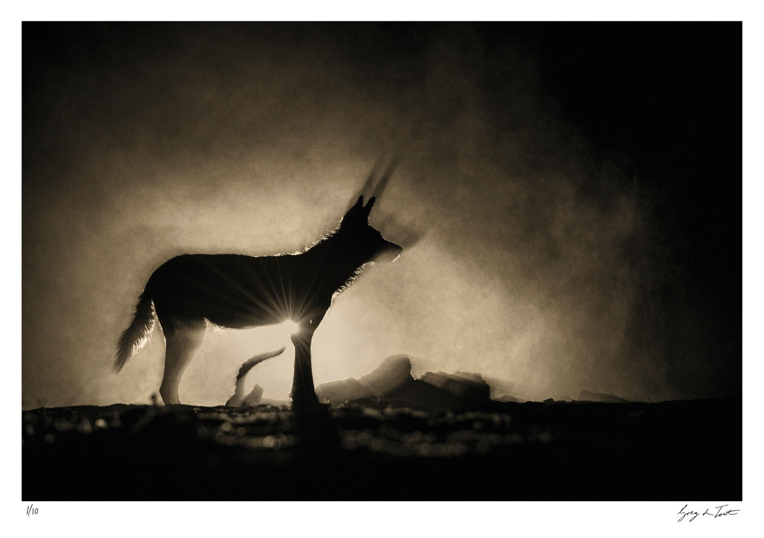 Ethereal Collection - Shadow and Soul   Ed 10   Greg Du Toit