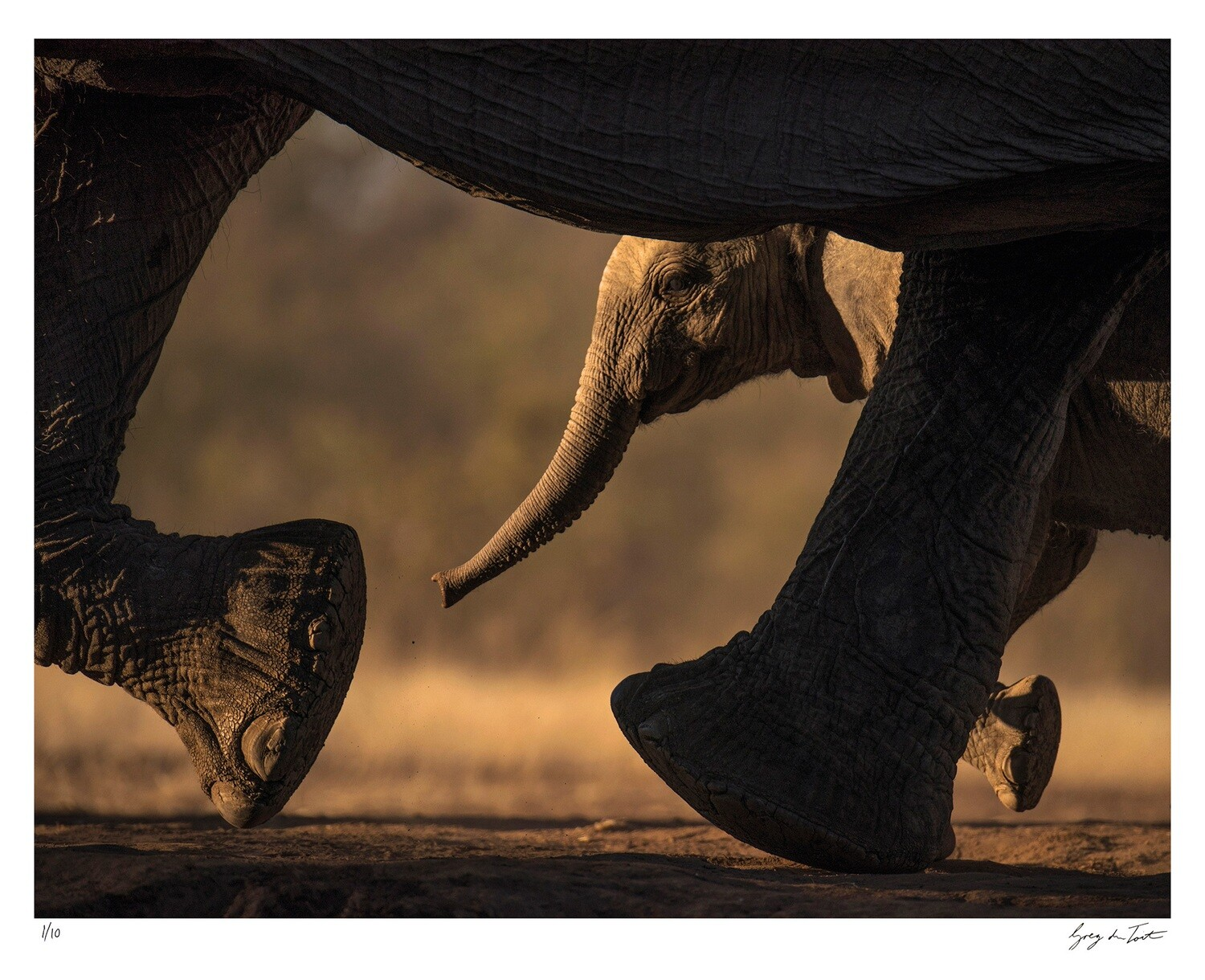 On the Move - Keeping up with Mom | Ed 10 | Greg Du Toit
