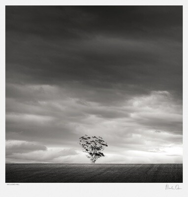 Classic Black and White | Secluded Hill | Martin Osner