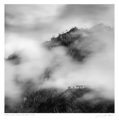 Ebony & Ivory - Misty Peak | Ltd Ed | Samantha Lee Osner