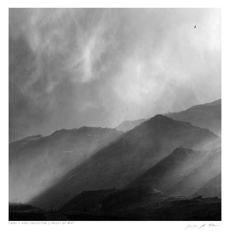 Ebony & Ivory - Valley of Mist | Ltd Ed | Samantha Lee Osner