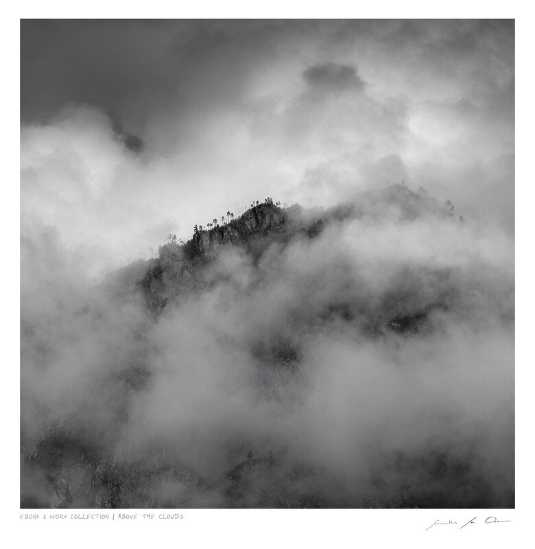 Ebony & Ivory - Above the Clouds | Ltd Ed | Samantha Lee Osner