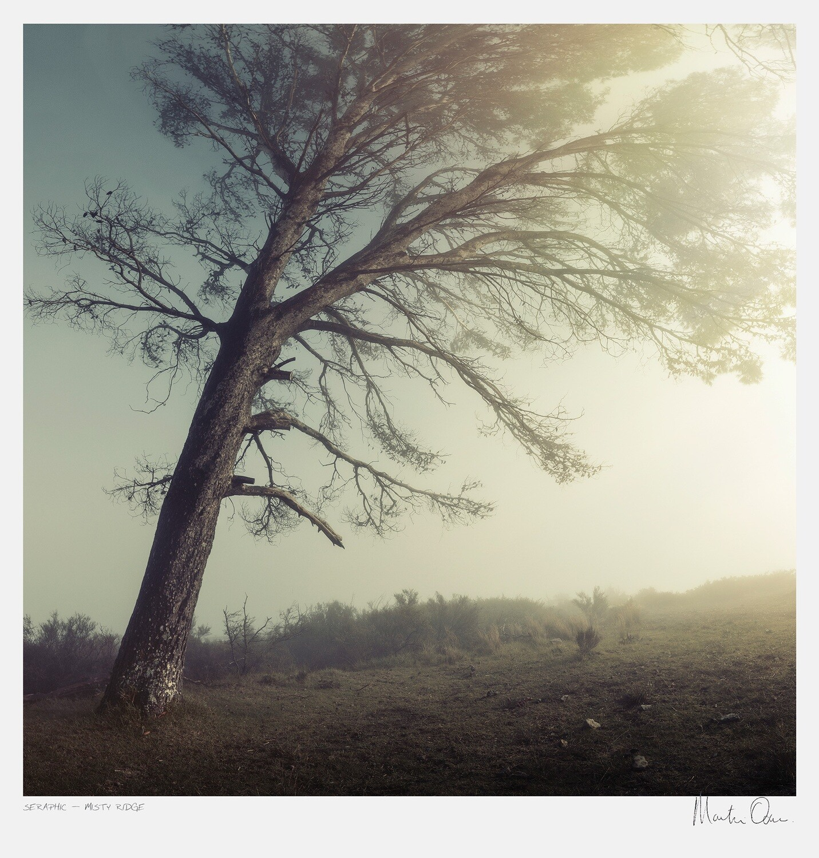 Seraphic | Misty Ridge | Martin Osner