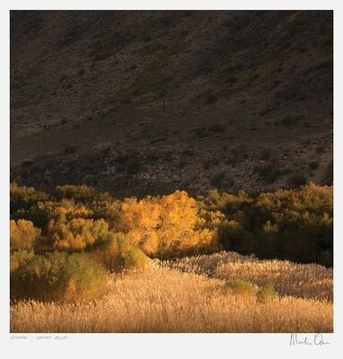 Seraphic | Vibrant Valley | Martin Osner