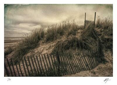 Dunes | Bray-dunes | Flanders | Ed 10 | Harry De Zitter