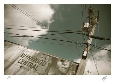 Looking up | Wynwood | Ed 10 | Harry De Zitter