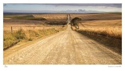 Long walk home | Ed 30 | Peter Corbett