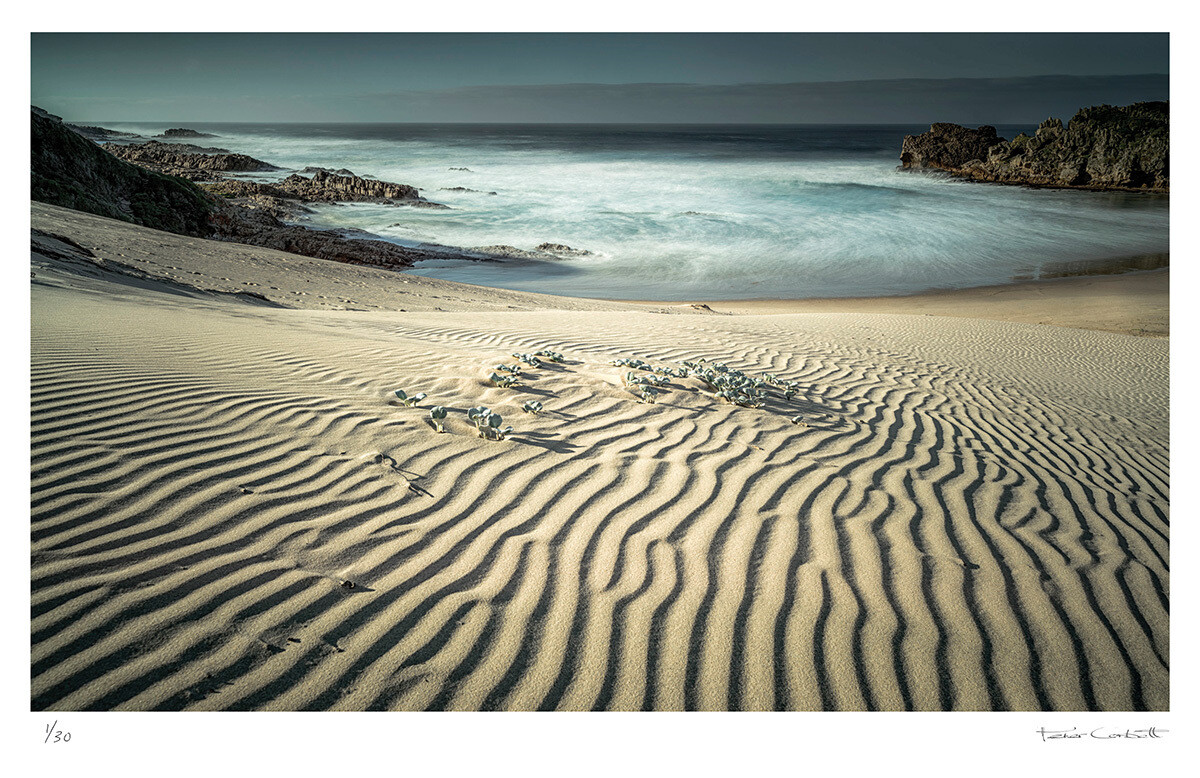 Luna cove | Ed 30 | Peter Corbett