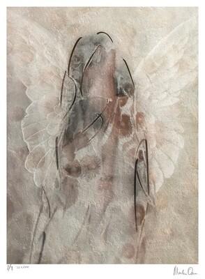 Seraph | Edition 7 | Martin Osner