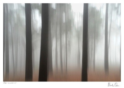 Illusion No.2 | Edition 50 | Martin Osner