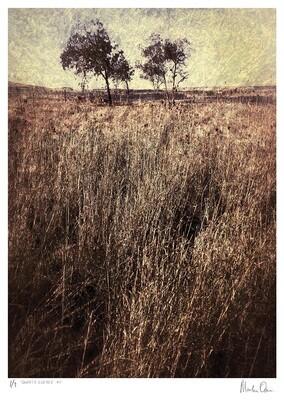 Quintessence No.2 | Ed 7 | Martin Osner