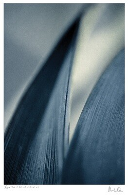 Qui-a-de-la-classe | Ed 50 | Martin Osner