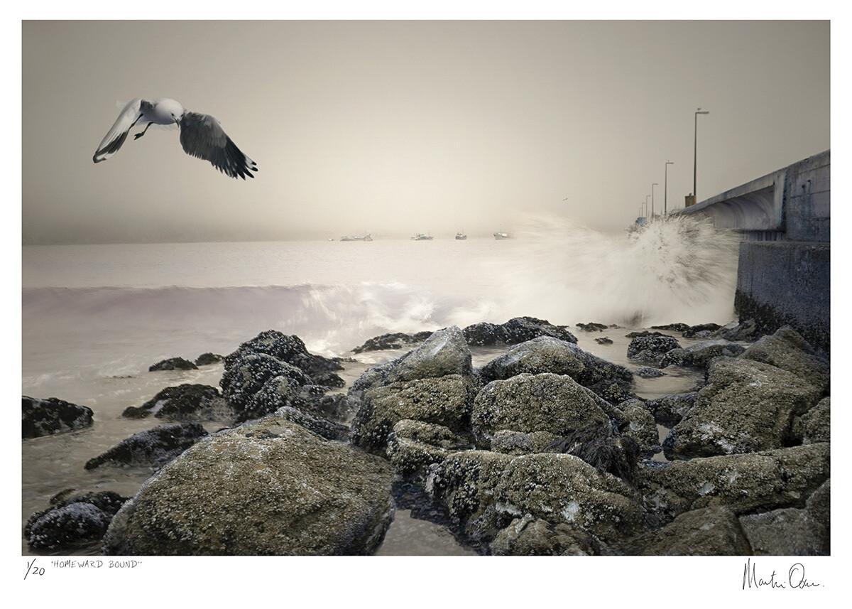 Homeward Bound | Limited 20 | Martin Osner